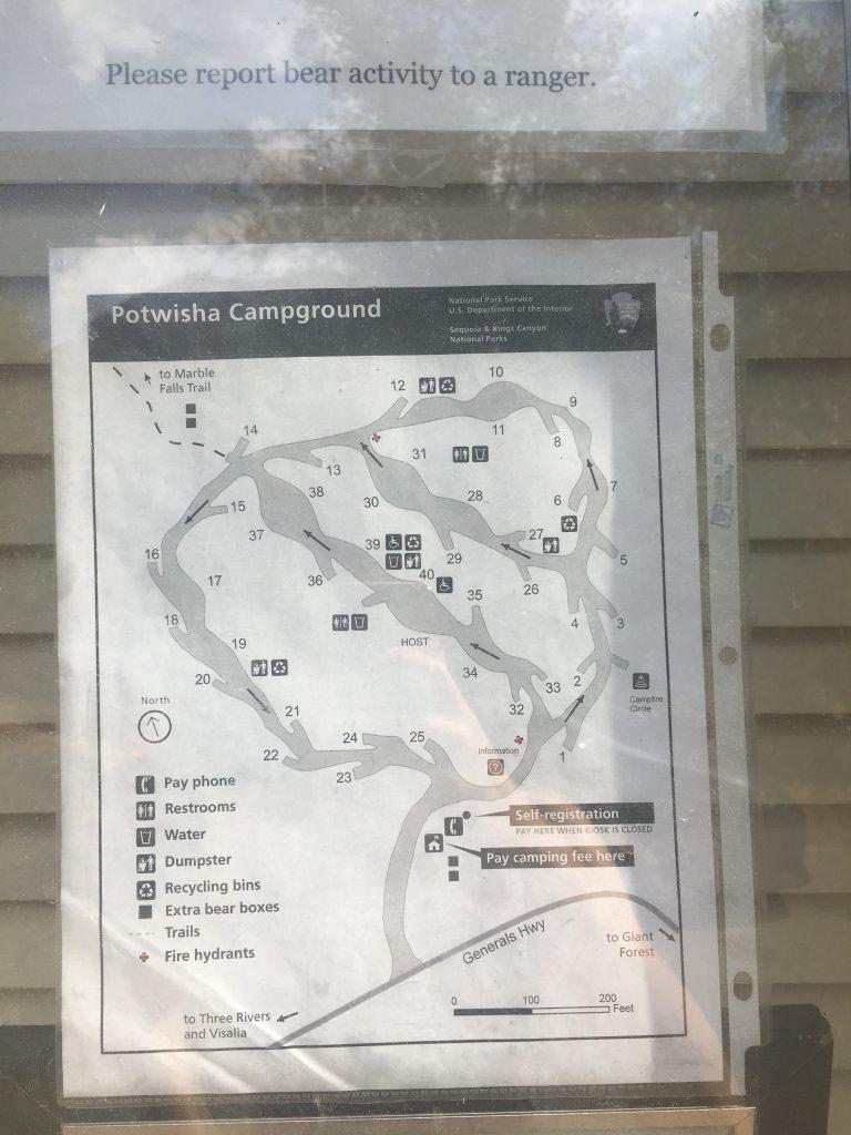 Park Narodowy Sekwoi Camping