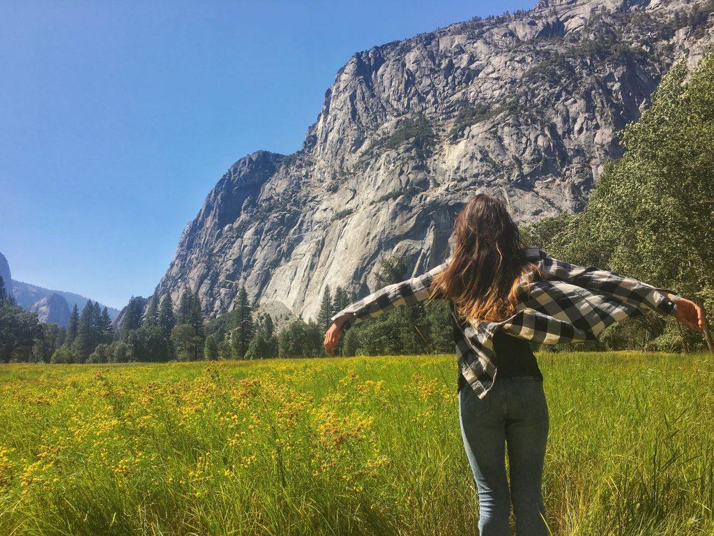 Park Narodowy Yosemite Meadow