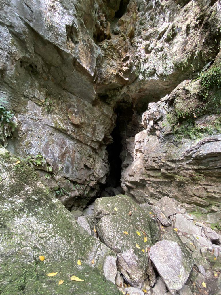 jaskinia nowa zelandia