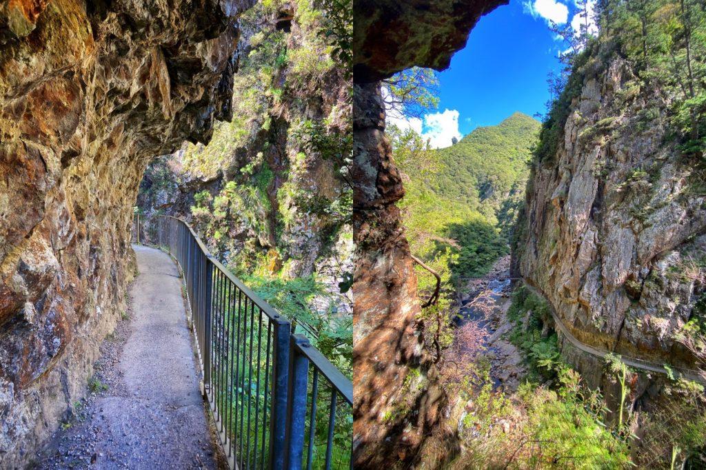 karangahake gorge window walk