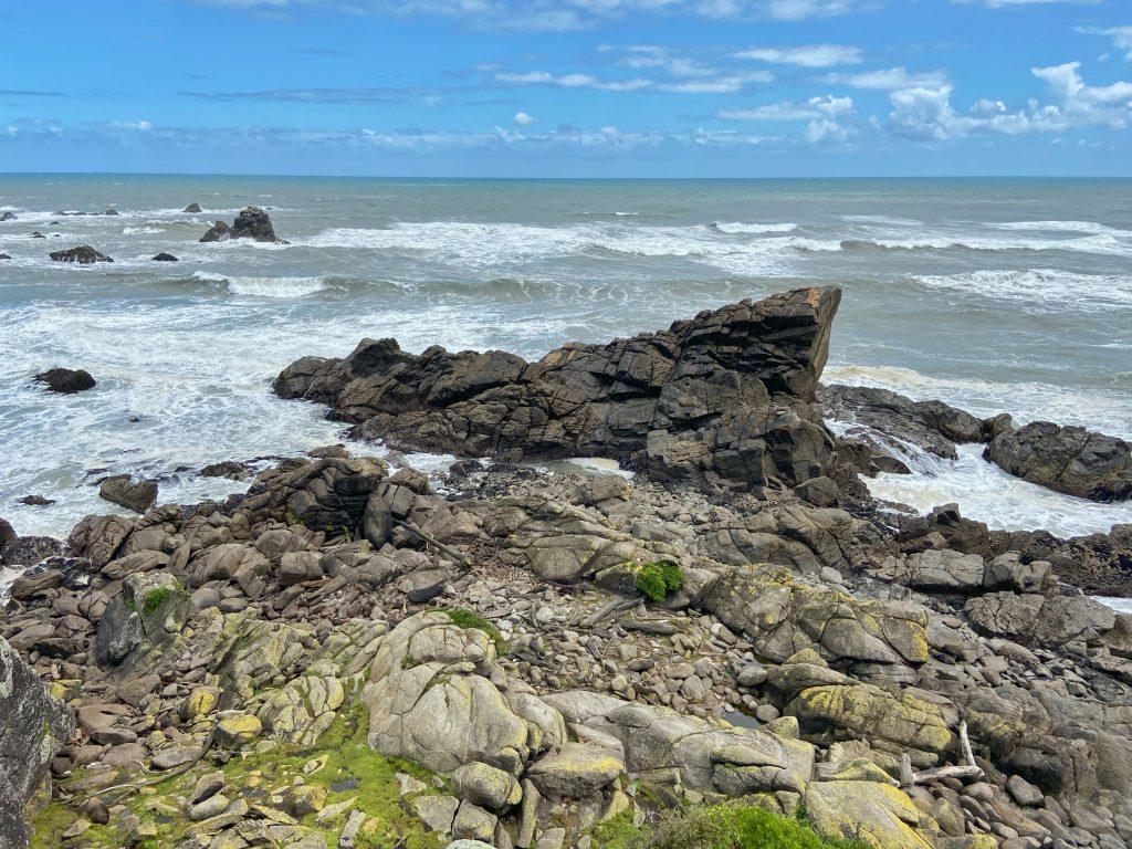 Seal Colony w Tauranga Bay zagadka